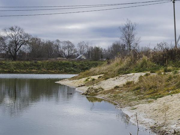 Единственный водоем в подмосковном Пешково оказался на грани исчезновения