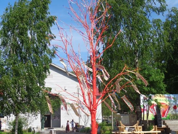 Местом притяжения в Ленинградской области стало вепсское «Древо жизни»