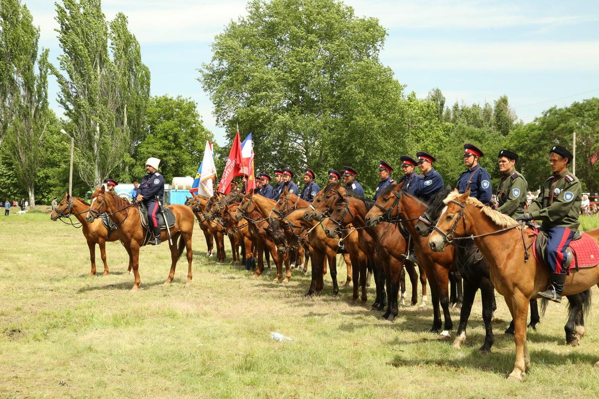 Конный переход казаков юга России встретили в Симферополе