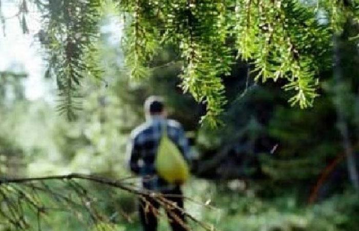 На Камчатке нашли заблудившегося туриста из Ханты-Мансийска