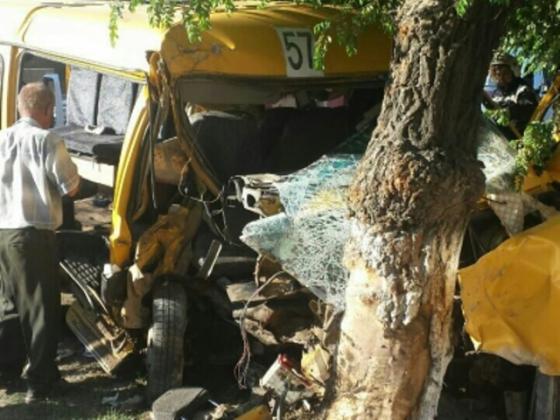 В Волгограде маршрутка врезалась в дерево фото: 34.mvd.ru