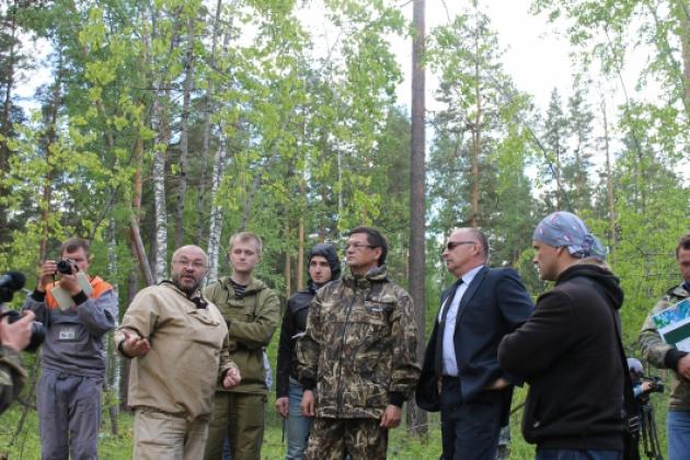 Вырубка леса в Алтайском крае: общественники провели рейд