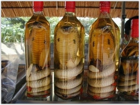 Таиландская фауна в алкоголе.