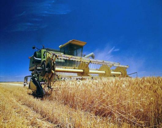 В «украинском» Донбассе собран 1 млн. тонн зерна