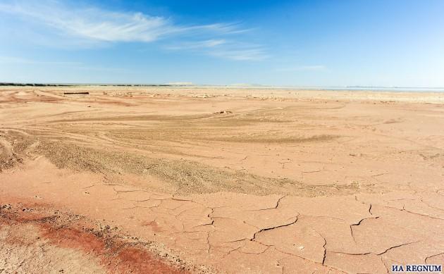 В Оренбуржье ущерб от засухи оценивают в 1,5 млрд рублей