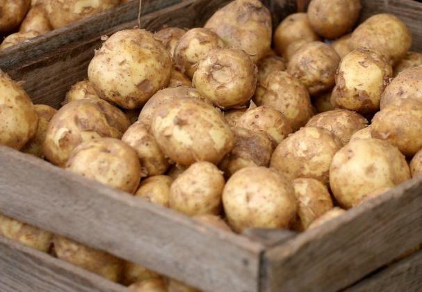 В июле в Красноярском крае картофель подорожал на 18,5%