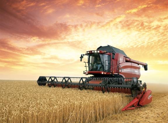 Ткачев: Россия может увеличить производство зерна до 130 млн тонн
