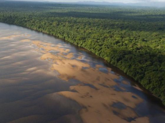 Река Эссекибо.
