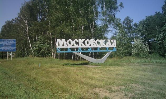 Частная компания незаконно вырубила подмосковный лес