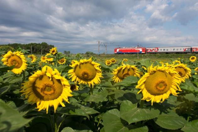 На Камчатке впервые запустили «социальный поезд»