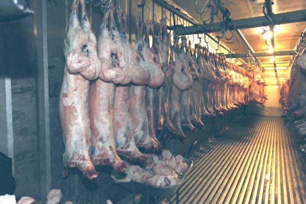 В подмосковном Реутове нашли запрещённое мясо из Западной Европы