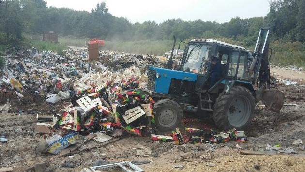 Под Псковом уничтожают около 40 тонн санкционных фруктов
