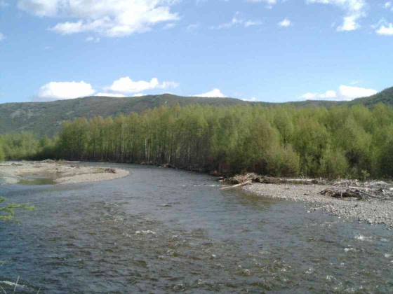 Река Хасын.
