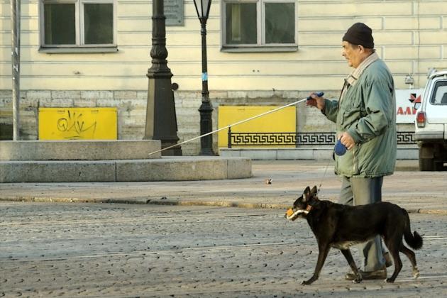 Слепой и собака-поводырь