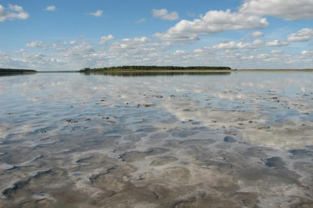 Озеро Медвежье (Курганская область).
