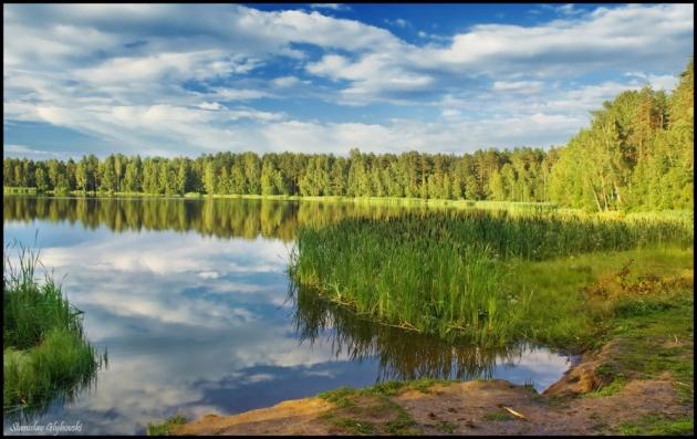 Озеро в Ленинградской Области.