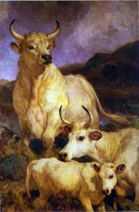 Инициатива ограничения поголовья скота – «безответственная и вредная»