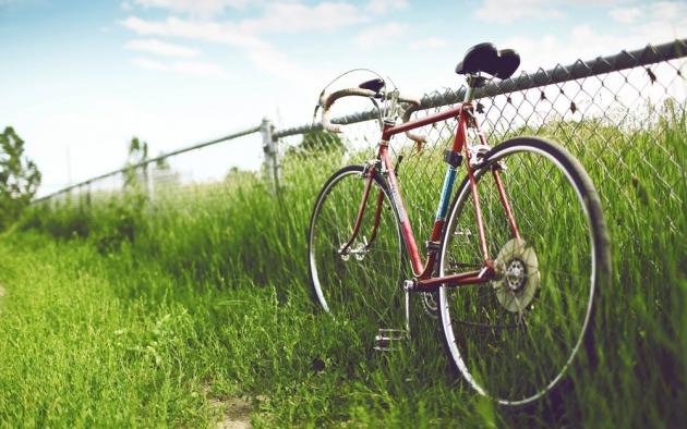 Жители Курской области стали чаще покупать велосипеды и бытовую химию