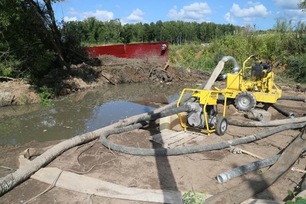 В Подмосковье нет муниципальных проектов по очистке рек