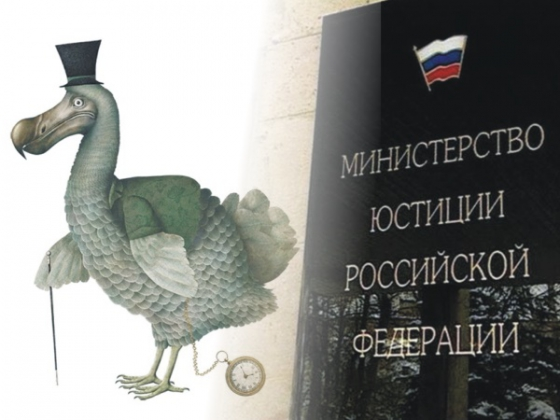 У нижегородских экологов нашли новые иностранные источники финансирования
