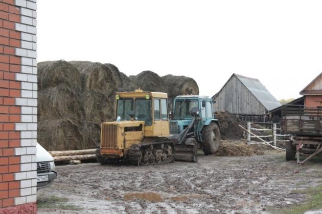 Фермерское хозяйство.