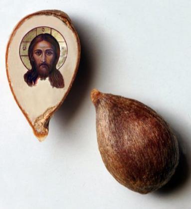 Омич нарисовал Спаса Нерукотворного на срезе яблочного зернышка