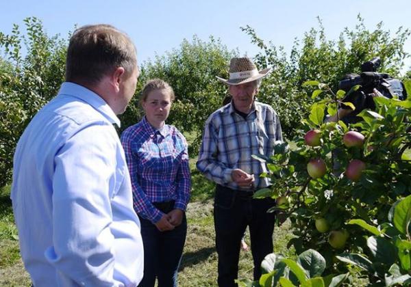 Год «яблочному вето» для Польши: Калининград – лидер по садоводству в СЗФО