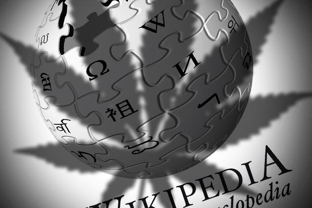 «Википедию» могут заблокировать в РФ за статью о наркотике. Коллаж ИА REGNUM