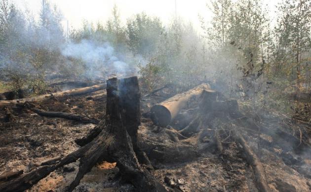 Дым от лесных пожаров достиг столицы Бурятии