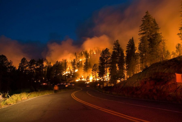 В штате Вашингтон стихийные  пожары.