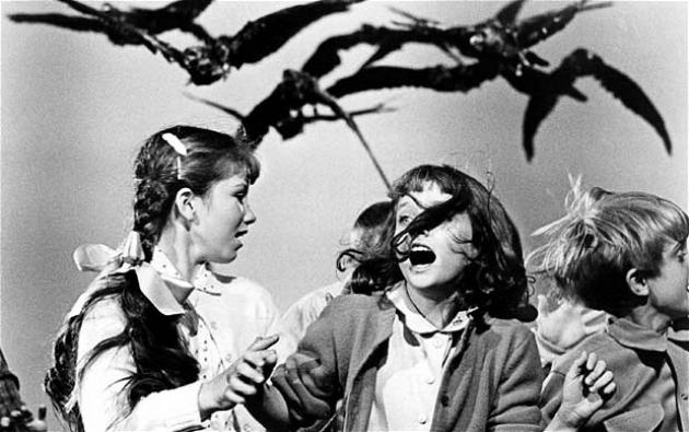 Кадр из х/ф «Птицы» А. Хичкока. Изображение: telegraph.co.uk