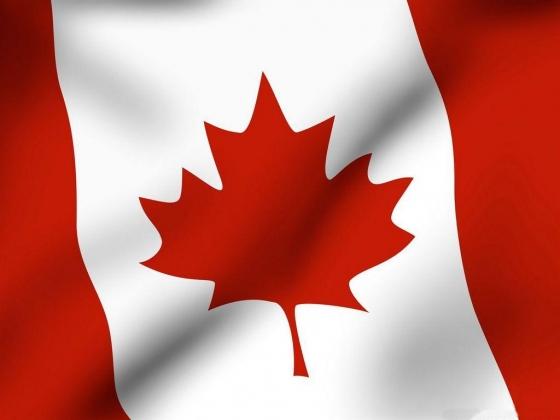 Канада: «Ездить в ИГИЛ незаконно»