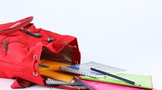 ОНФ: в Курской области на сборы ребенка в школу в среднем нужно 24 тыс. руб