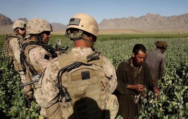 Семена разрушения: Кому служит наркобизнес в Афганистане?