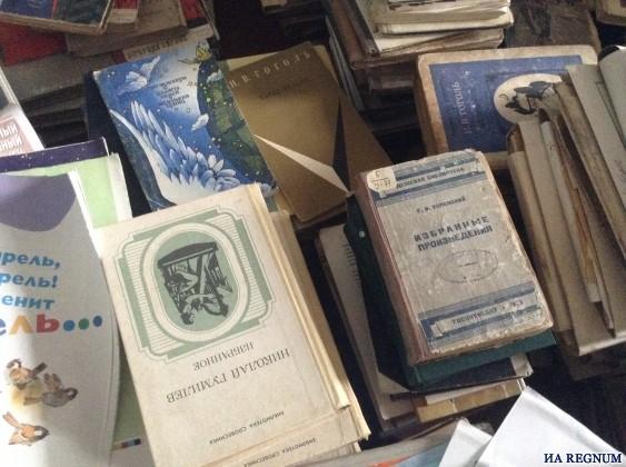 Библиотеки в Алтайском крае объединяют с клубами, музеями и парками