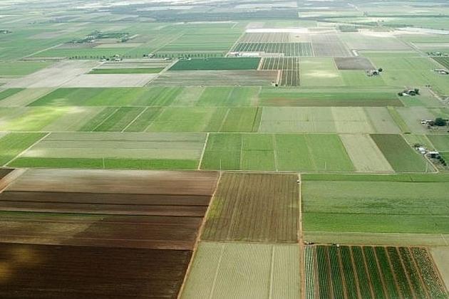 Законопроект о гектаре на Дальнем Востоке внесен в правительство