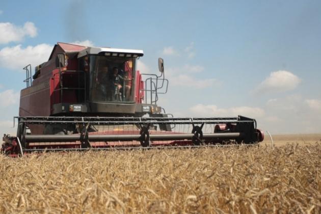 Аграрии Липецкой области собрали почти два миллиона тонн зерна