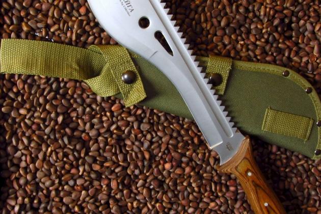 Новый законопроект об оружии— «чисто рекламный ход»