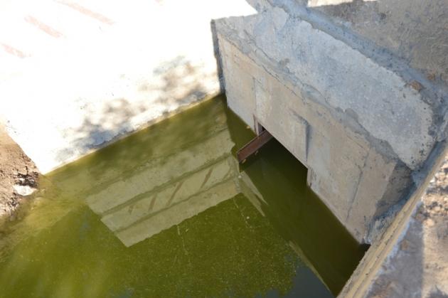 Поселок Ильича в Барнауле защитили от паводка