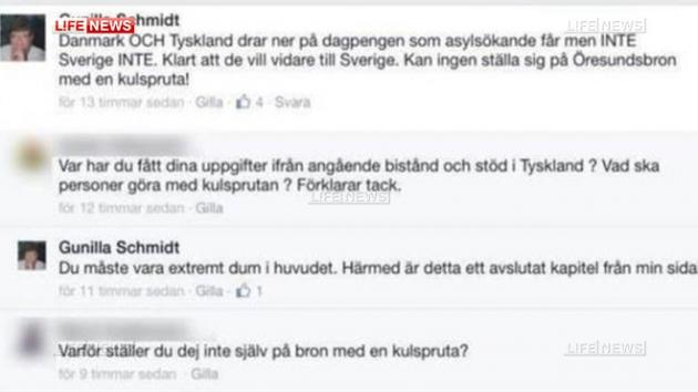 Шведский политик предложила защититься от мигрантов пулеметом