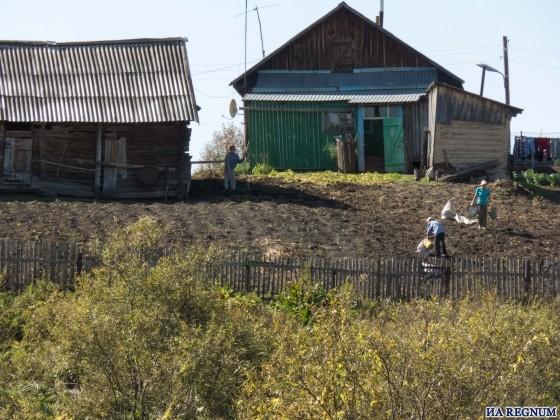 Жители Шатобола живут натуральным хозяйством