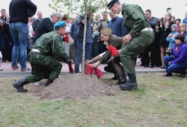 На аллее калужского мемориального комплекса посадили березы