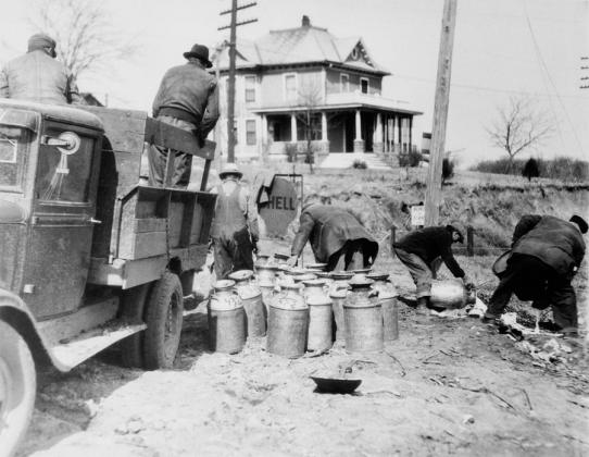 Фермеры сливают молоко в сточную канаву во время Великой депрессии. США, 1930-е