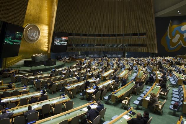 Генеральная Ассамблея ООН.