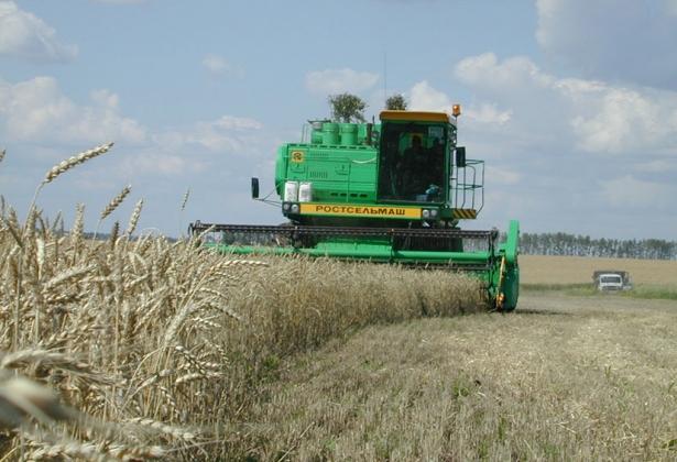 Уборка зерновых, фото belapk.ru