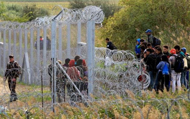 Из-за беженцев Литва усилила патрулирование на границе с Польшей