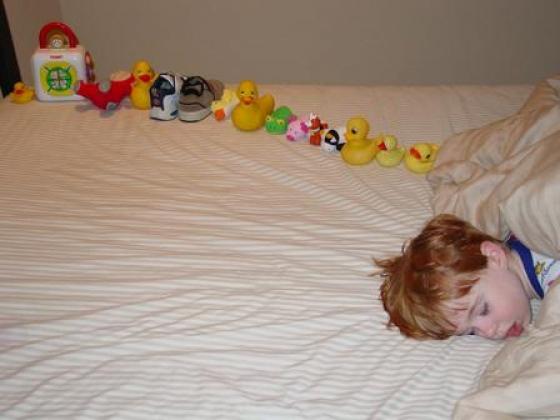 Игрушки, выложенные в ряд мальчиком-аутистом.
