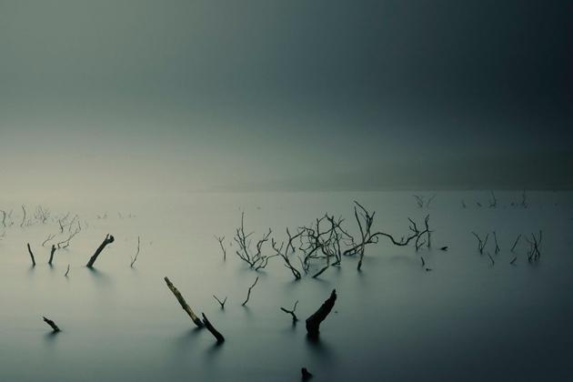 Темная вода.