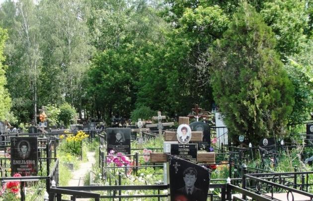 Рост и снижение смертности в России... Почему?