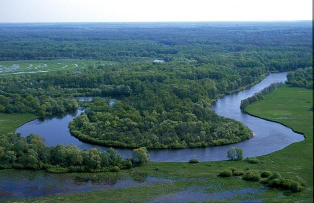 «Брянский лес» природный биосферный заповедник.